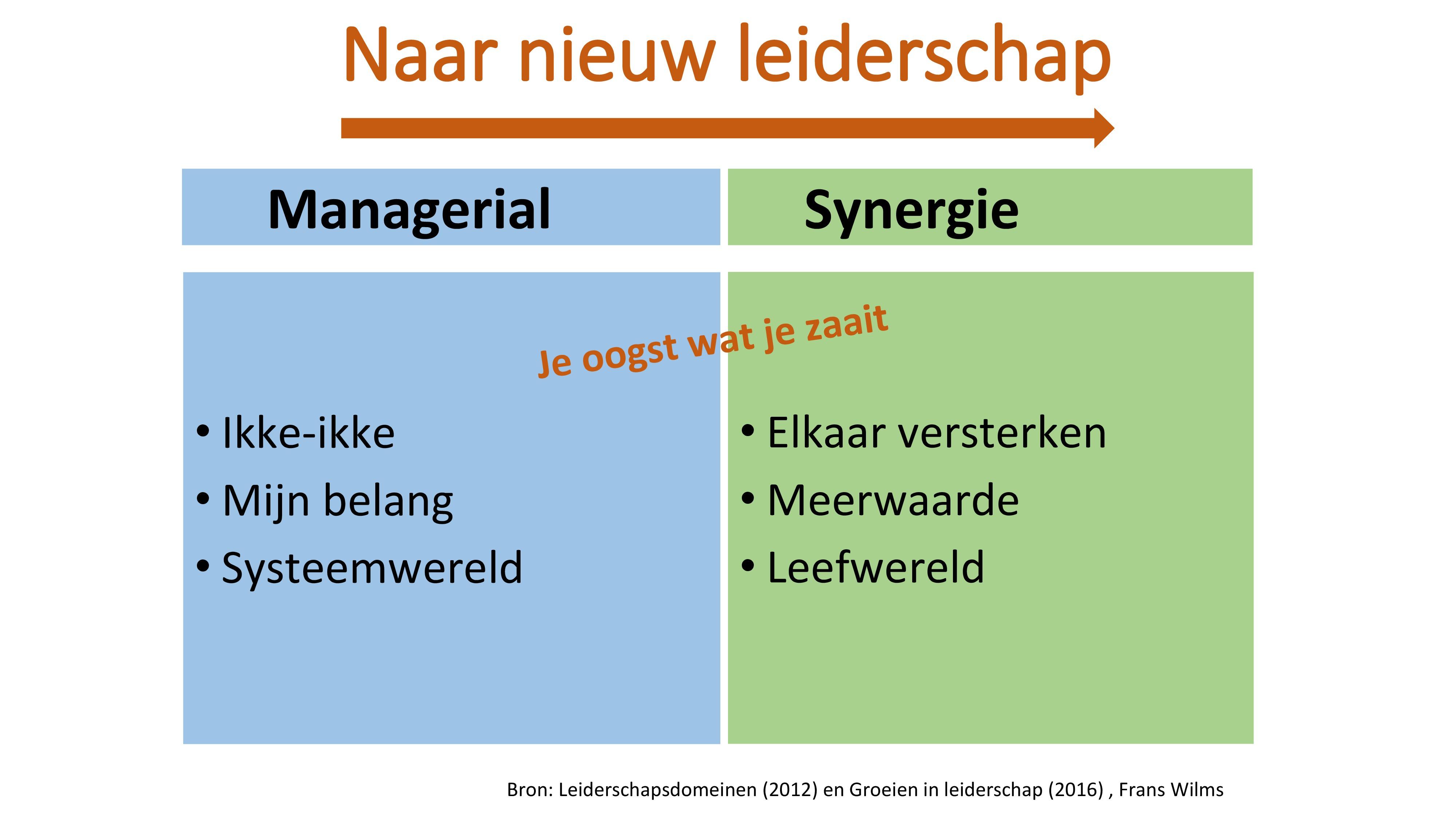 Van Managerial naar synergie leiderschap